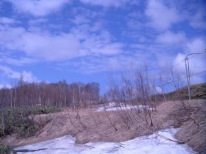 5月ニセコ、大岸中古 009