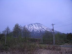 【ニセコ】虻田郡真狩村字社273番447