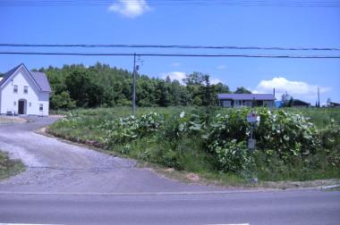 【ニセコ】虻田郡ニセコ町字里見11番29